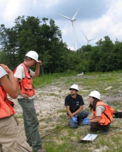 Bat conservation at wind farm