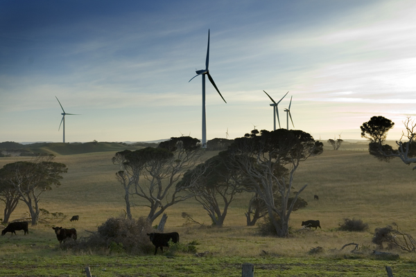 Cape Bridgewater wind farm