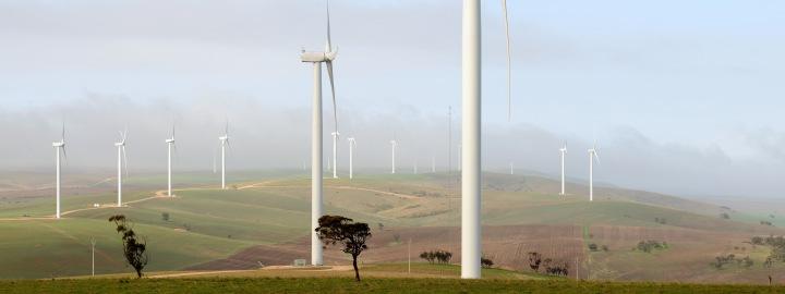 Windfarm141