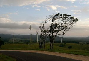 Windy_Hill_Wind_Farm