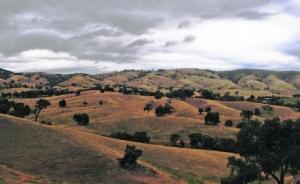 Image: Cherry Tree Range; source: Seymour Telegraph
