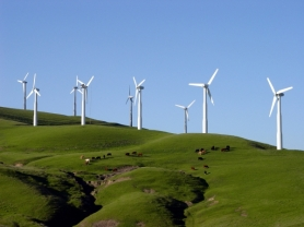 ECO_Windfarm-600x0