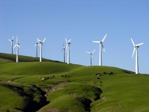 ECO_Windfarm-600x0