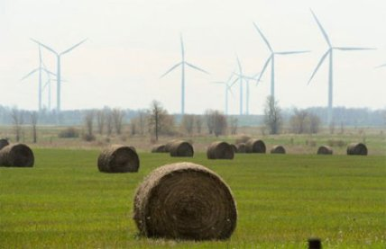 wind_hay