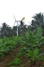 wind turbine behind Muri beach, on Rarotonga, Cook Islands