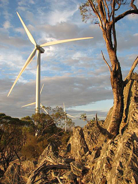waterloo wind farm